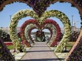 Dubai Miracle Garden (12)