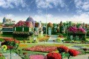Dubai Miracle Garden (28)