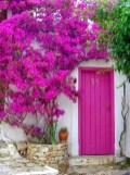 Rengarenk çiçekli kapı giriş tasarımları (3)