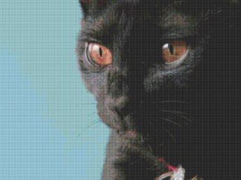 Kanaviçe Kedi (55)