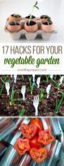 İnanılmaz Bahçe Düzenleme Fikirleri - Kendin yap (16)