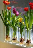 İnanılmaz Bahçe Düzenleme Fikirleri - Kendin yap (25)