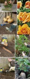 İnanılmaz Bahçe Düzenleme Fikirleri - Kendin yap (32)