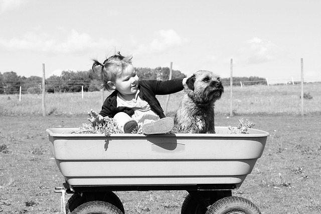 toddler and dog sitting together