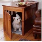 dog furniture selection tips