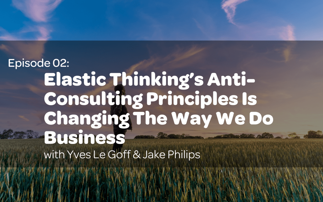 E2: Elastic Thinking's Anti-Consulting Principles Is Changing The Way We Do Business