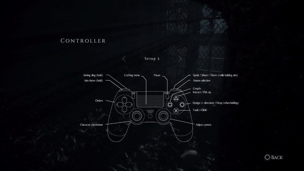 Controller layout 1