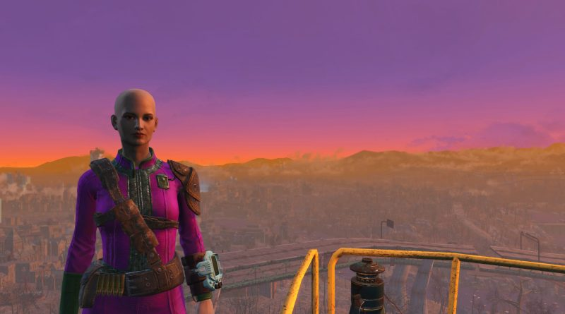 Susan's Fallout 4 character with the wasteland and a red, purple, and orange sunset in the background.