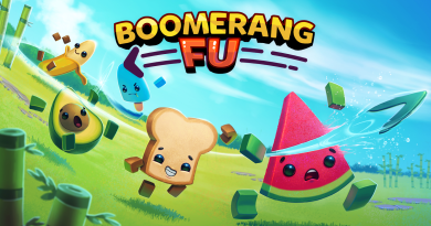 Boomerang Fu — Visually Impaired Review