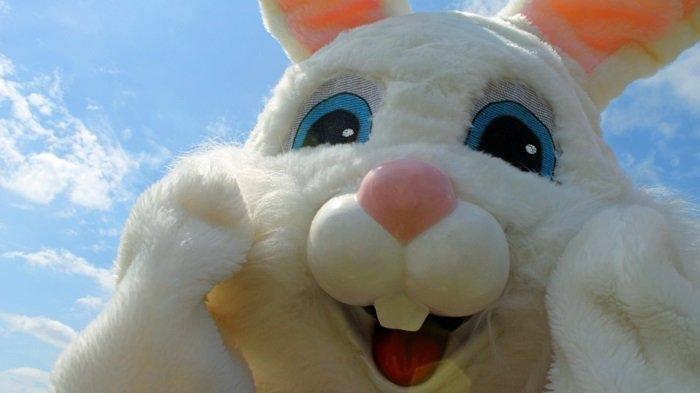 Easter Egg Supplier South Africa