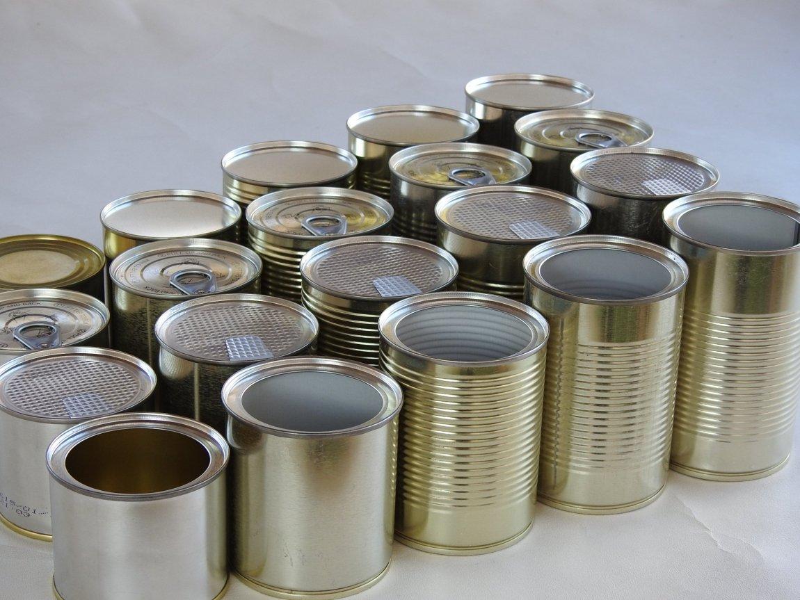 Tin Food Manufacturer
