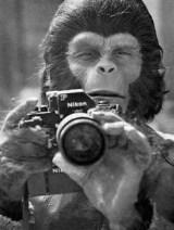 CIBASS El planeta de los simios once