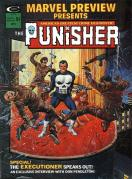 punishercover13