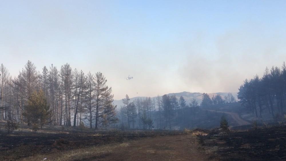 Çankırı'da orman yangınına 2 helikopter ve 1 uçak destek verdi