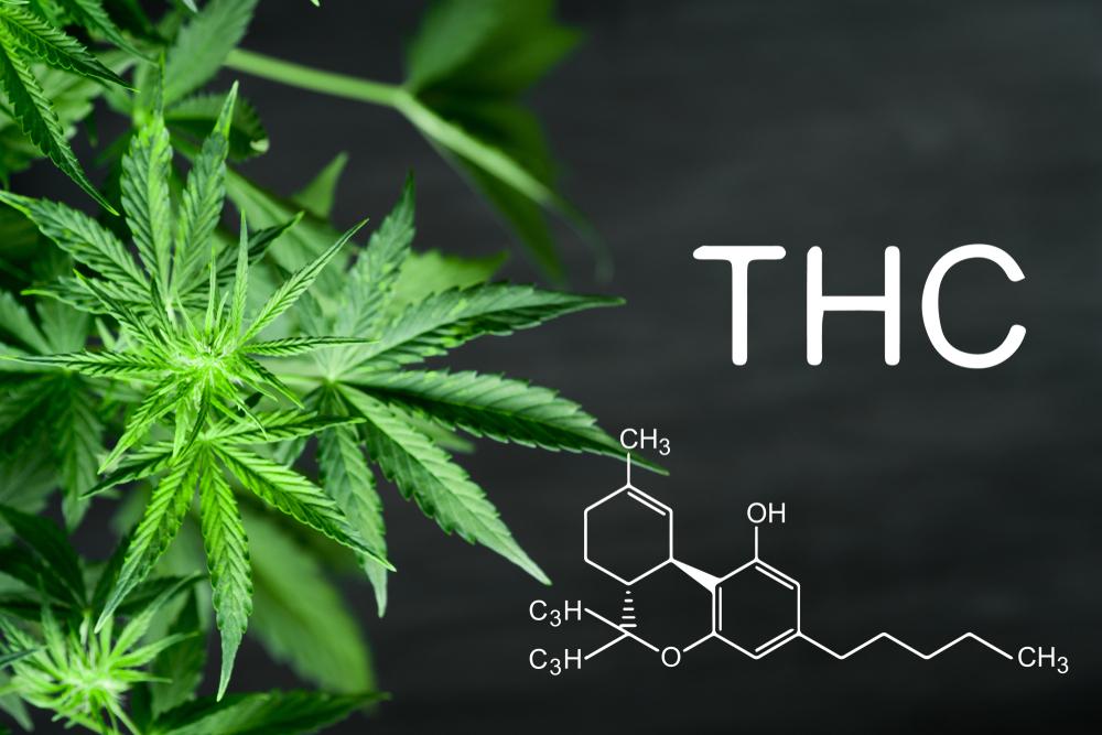 THC Tetrahydrocannabinol Molekül - THC (Tetrahydrocannabinol)