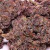 Buy Purple kush Online