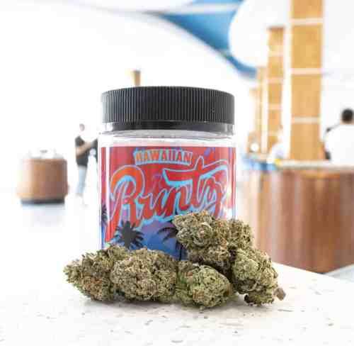 hawaiian runtz weed strain