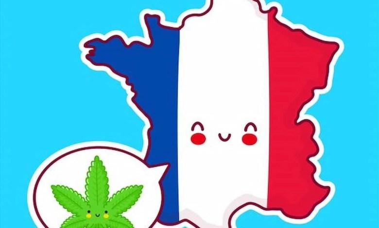 cbd et les français