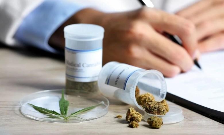 cbd et interactions médicamenteuses