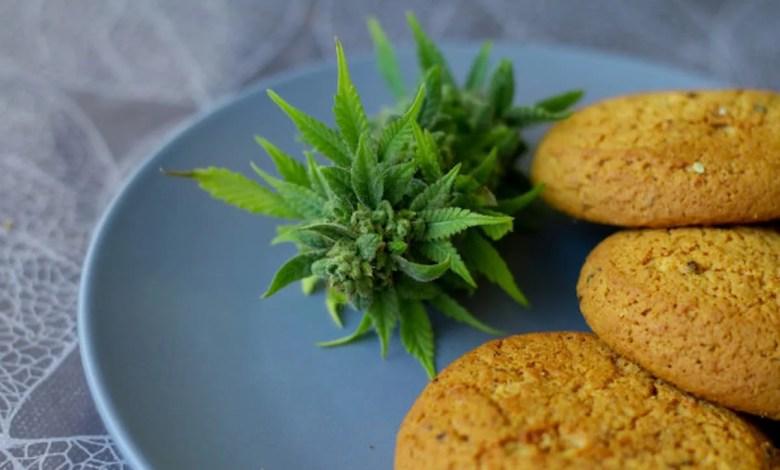 cookies et fleur de cbd, consommer cbd
