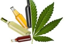 bouteilles d'alcool et feulle de cannabis