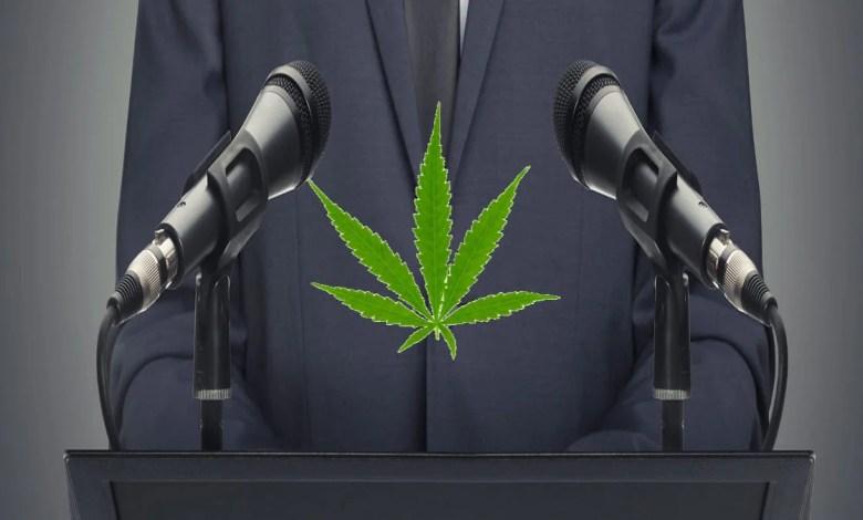 homme politique devant deux micros avec une feuille de cannabis devant