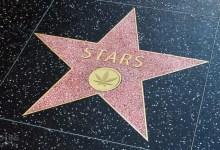star française et cbd