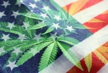 drapeau américain avec image cannabis flouté devant