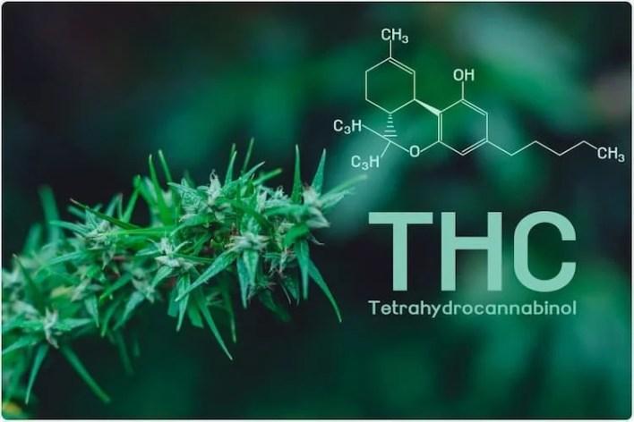 formule chimieffets du thc
