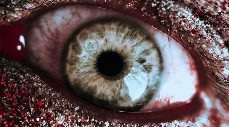 Horrortrip – Die wahren Hintergründe