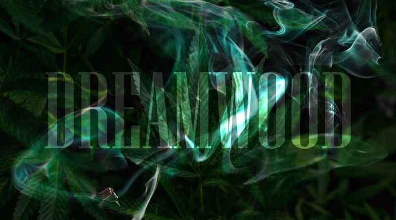 Dreamwood: Der nachhaltigste Holz-Vaporizer der Welt