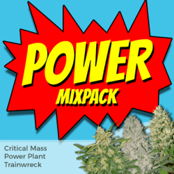 Power Seeds Mixpack