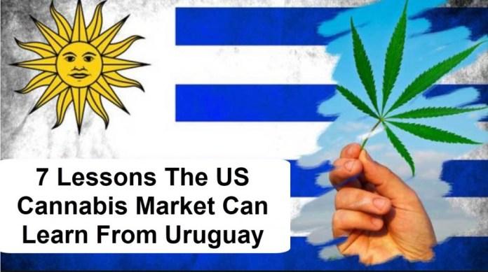 CANNABIS IN URUGUAY FOR LATIN AMERICA