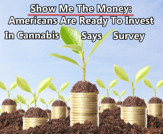 AMERICAN READY TO INVEST IN WEED