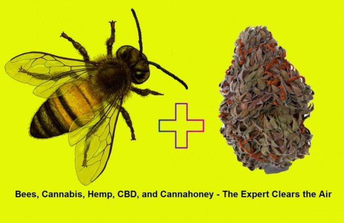 hemp and bee pollen