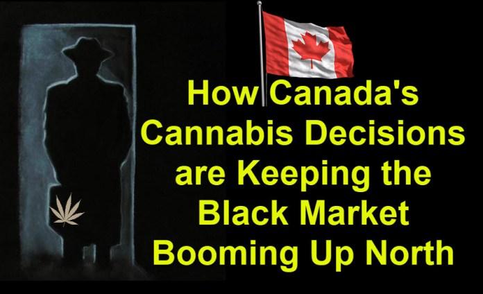 CANADIAN BLACK MARKET CANNABIS