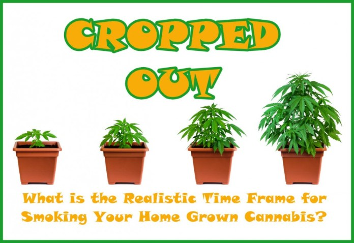 HOW LONG DOES IT TAKE TO GROW MARIJUANA AT HOME