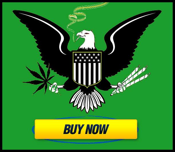 state run government dispensaries