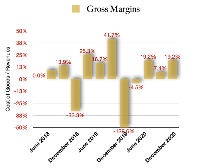 Halo Collective Gross Margins