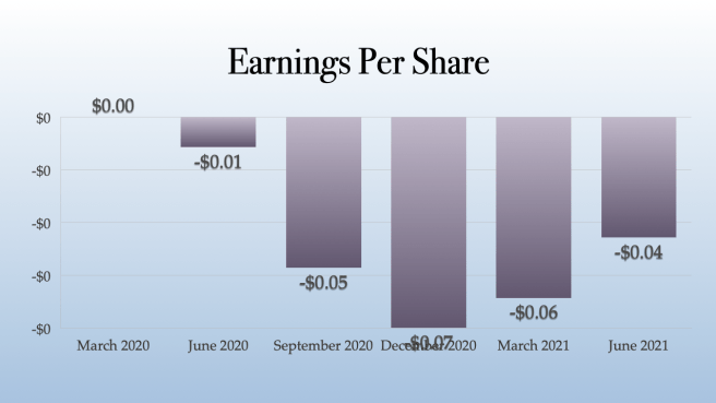 Plus Products Earnings Per Share