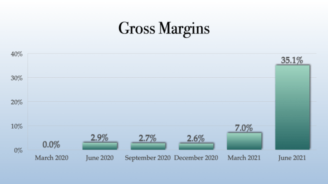Gaby Inc Gross Margins