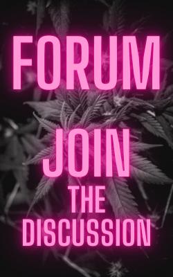 Cannabis Investing Newsletter Forum