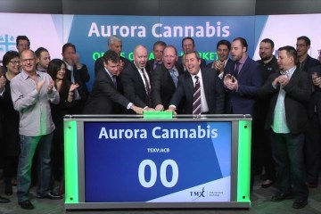 licensed producer aurora cannabis