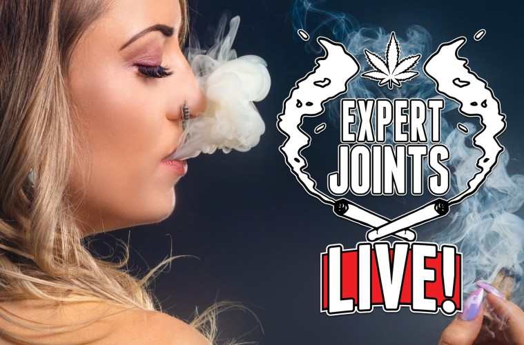 Now on High Times TV its Expert Joints LIVE