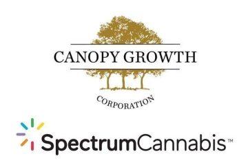 spectrum cannabis athritis society