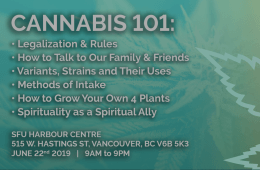 Cannabis 101: Essential Information for the new Canadian Reality