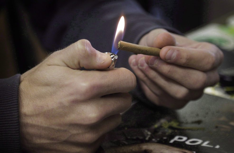 Illegal pot still a source for 4 in 10 cannabis users, Stats Can survey shows thumbnail