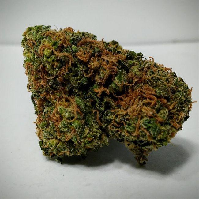 Cannabis strain blue dream