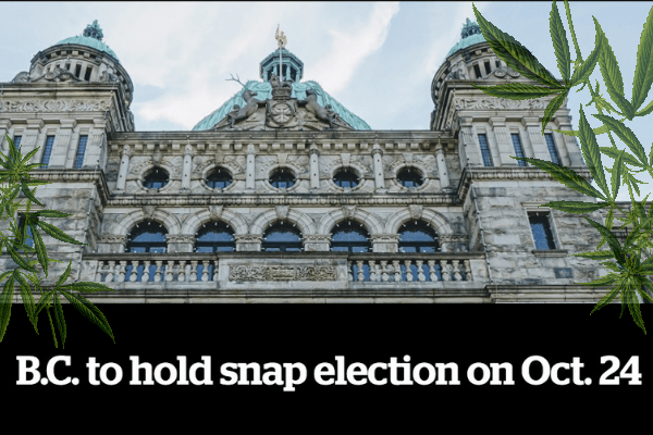 new bc government cannabis programs before elections