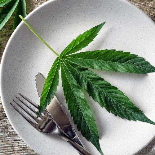 foods effecting cannabis intake